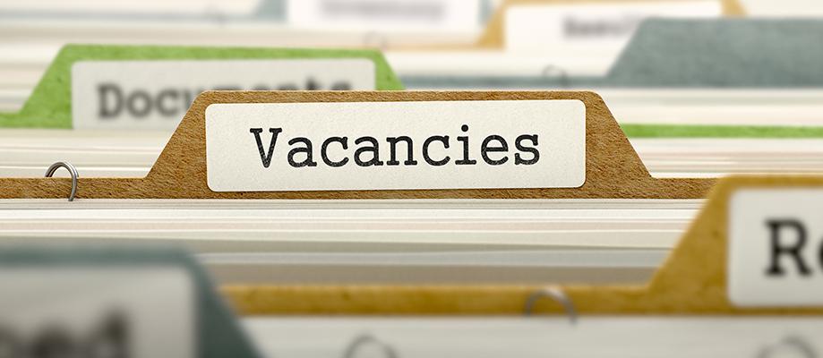 Job Vacancies for Multi-Skilled Operatives